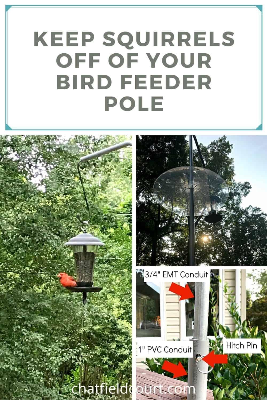 collage of squirrel-proof bird feeder pole