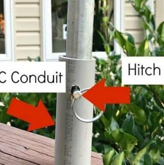 How to Stop Squirrels from Climbing a Bird Feeder Pole