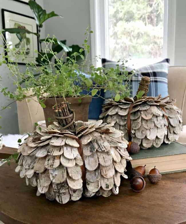 birch bark pumpkins on a wooden cutting board with faux acorns and a green potted plant for a thrifty fall decor giveaway