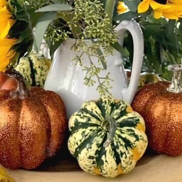 A pumpkins and gourds on a table