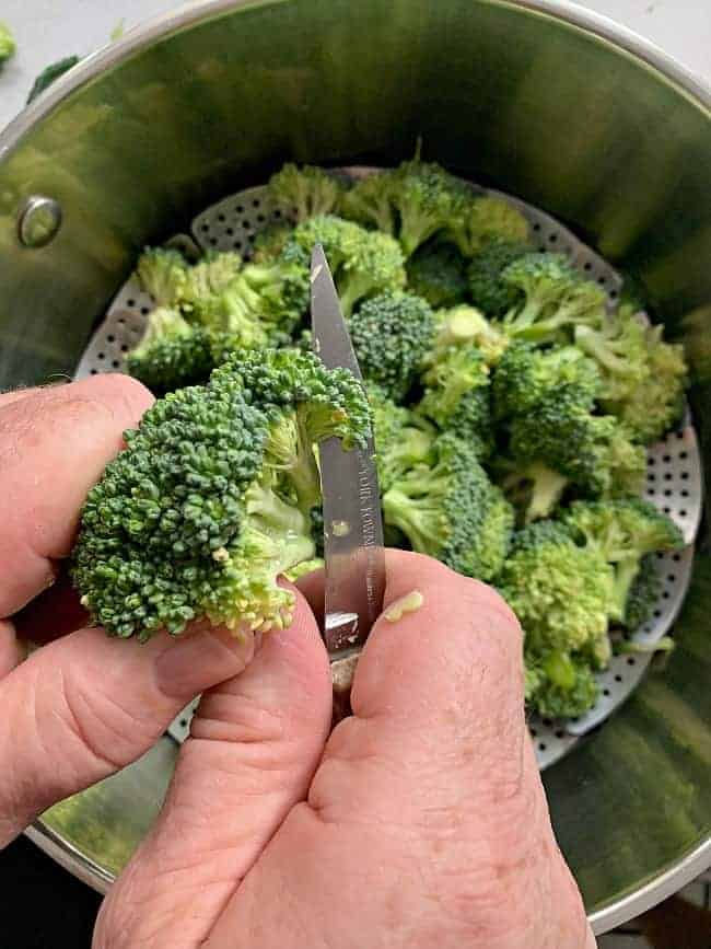 cutting fresh broccoli and adding it to steamer pot