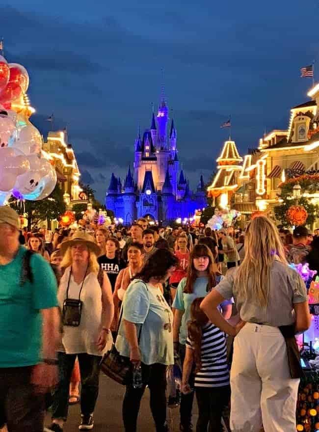Magic Kingdom at Disney World with Cinderella's Castle in background for Cottage Musings for October 2018