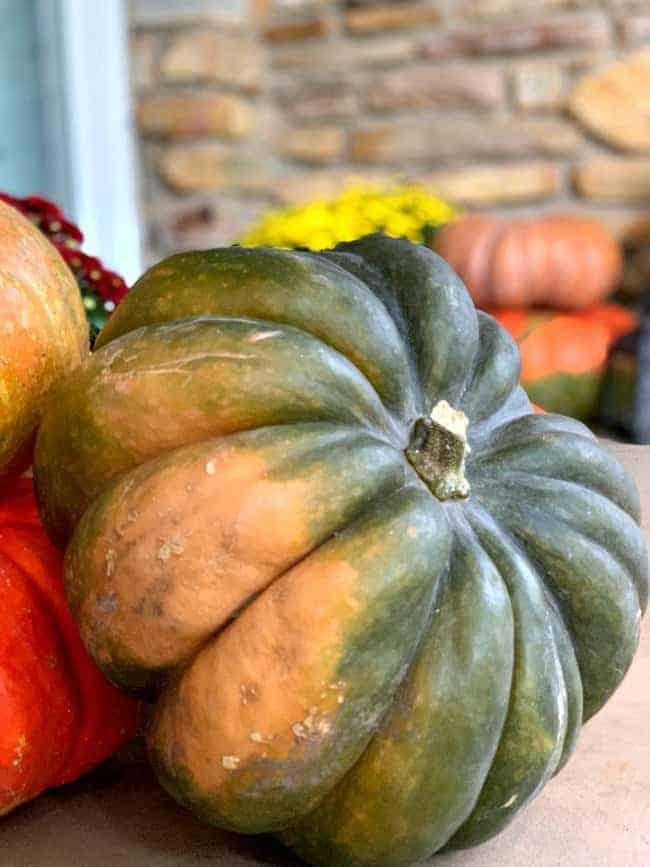 green and orange pumpkin