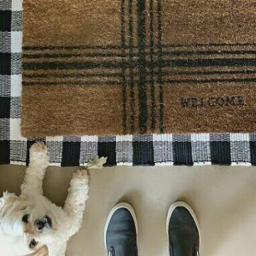 A dog and a front door mat
