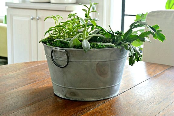 Simple DIY Succulent Planter