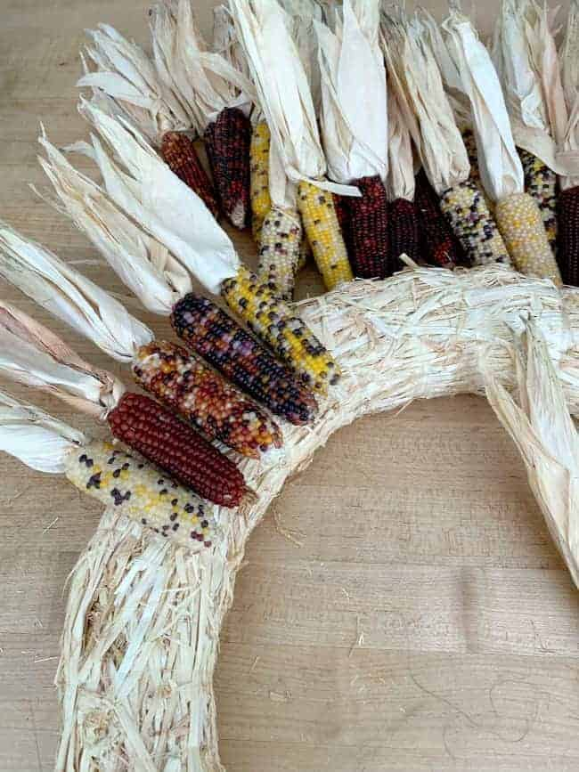 dry fitting Indian corn cobs on straw wreath form