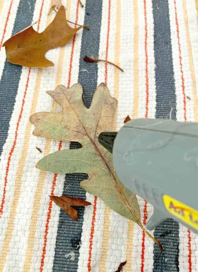 applying hot glue to back of fall leaf