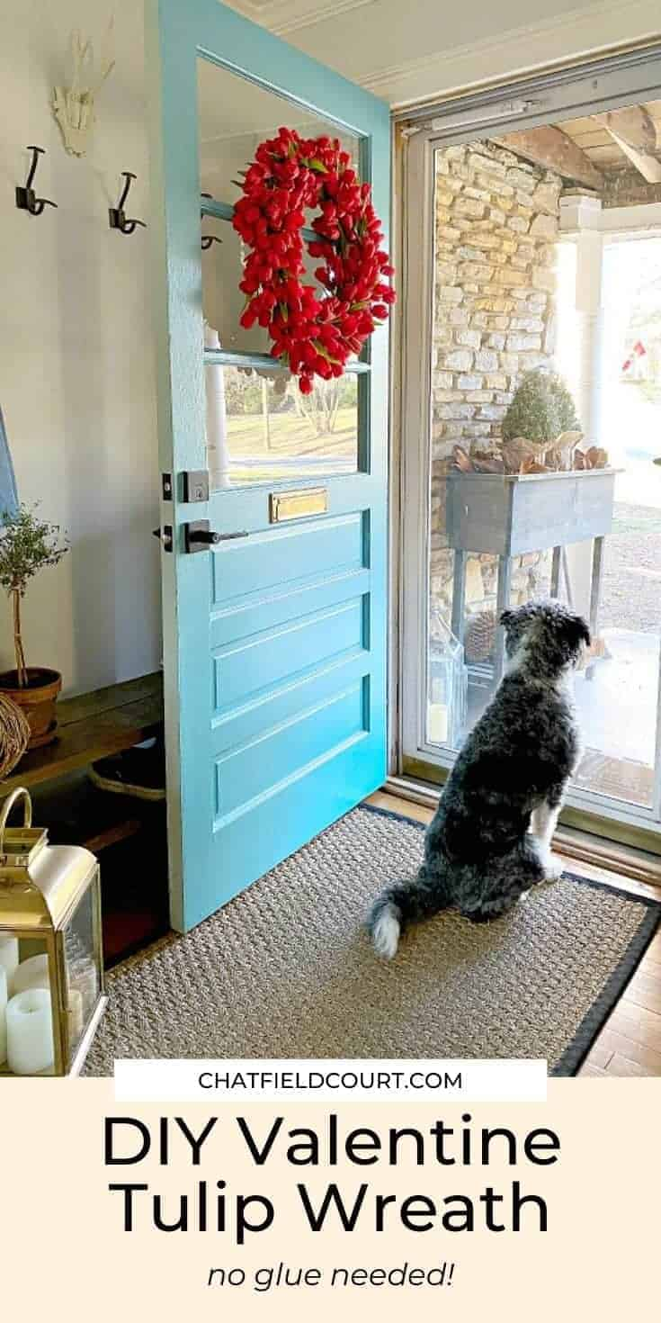 dog sitting by front door with red tulip wreath looking outside