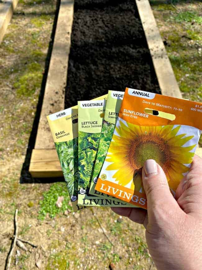 seed packets and garden