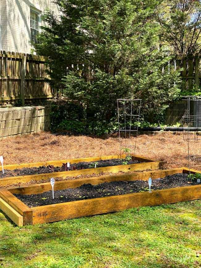 DIYraised planter beds with plants in them