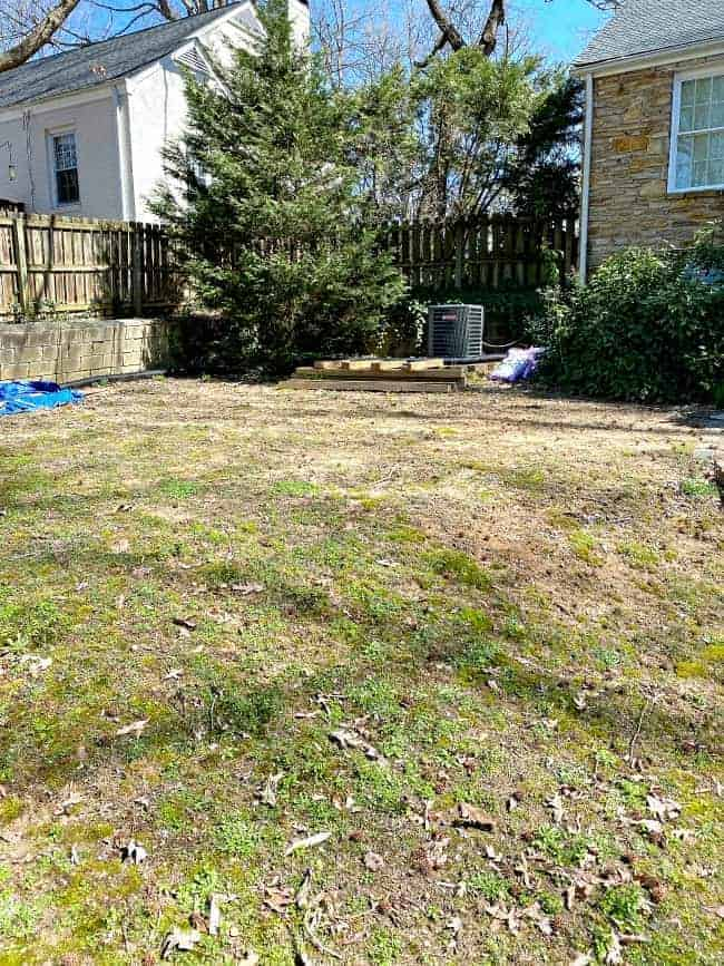 yard where planter beds will be built