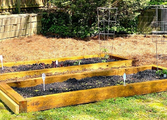 do it yourself raised planter beds with plants and DIY garden markers in them