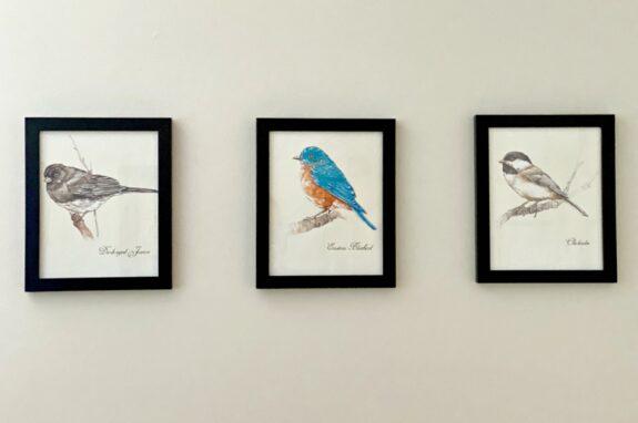 3 watercolor bird printables on wall