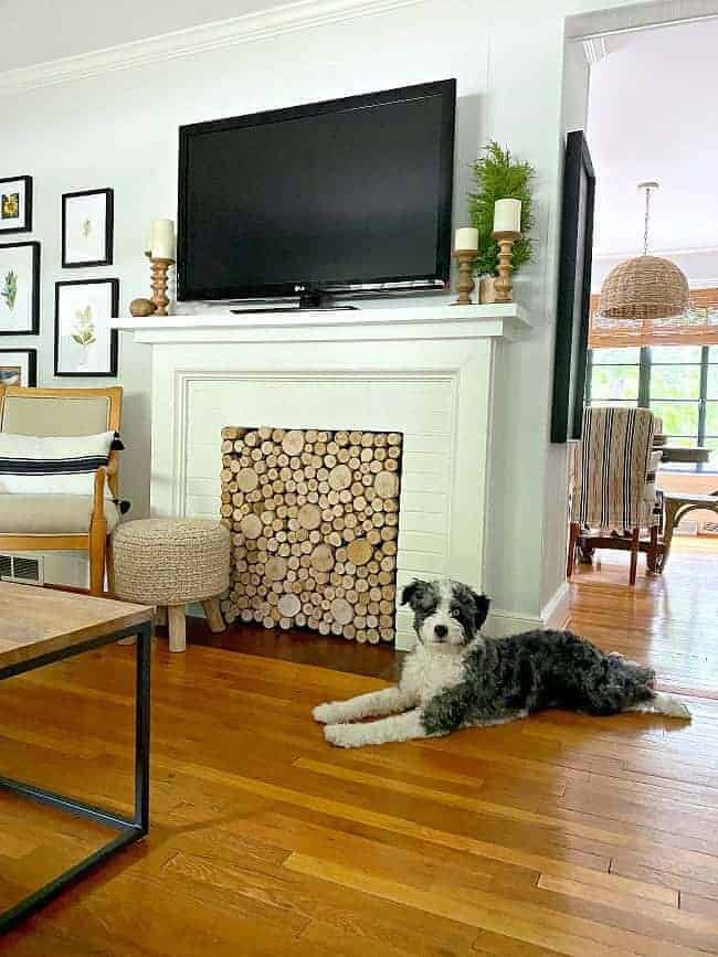 DIY fireplace screen in fireplace with tv on mantel
