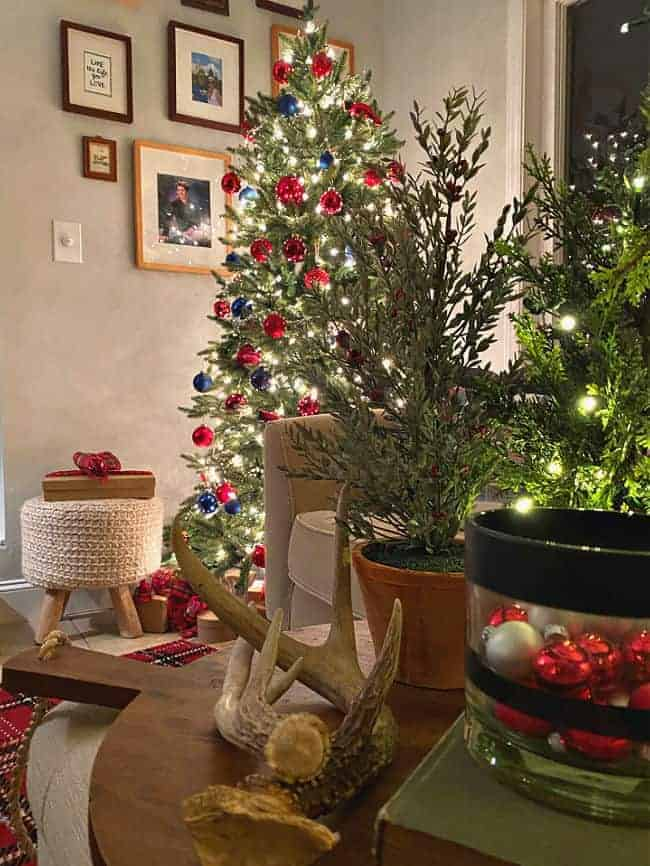 night view of Christmas tree in the corner of a sunroom decorated in red