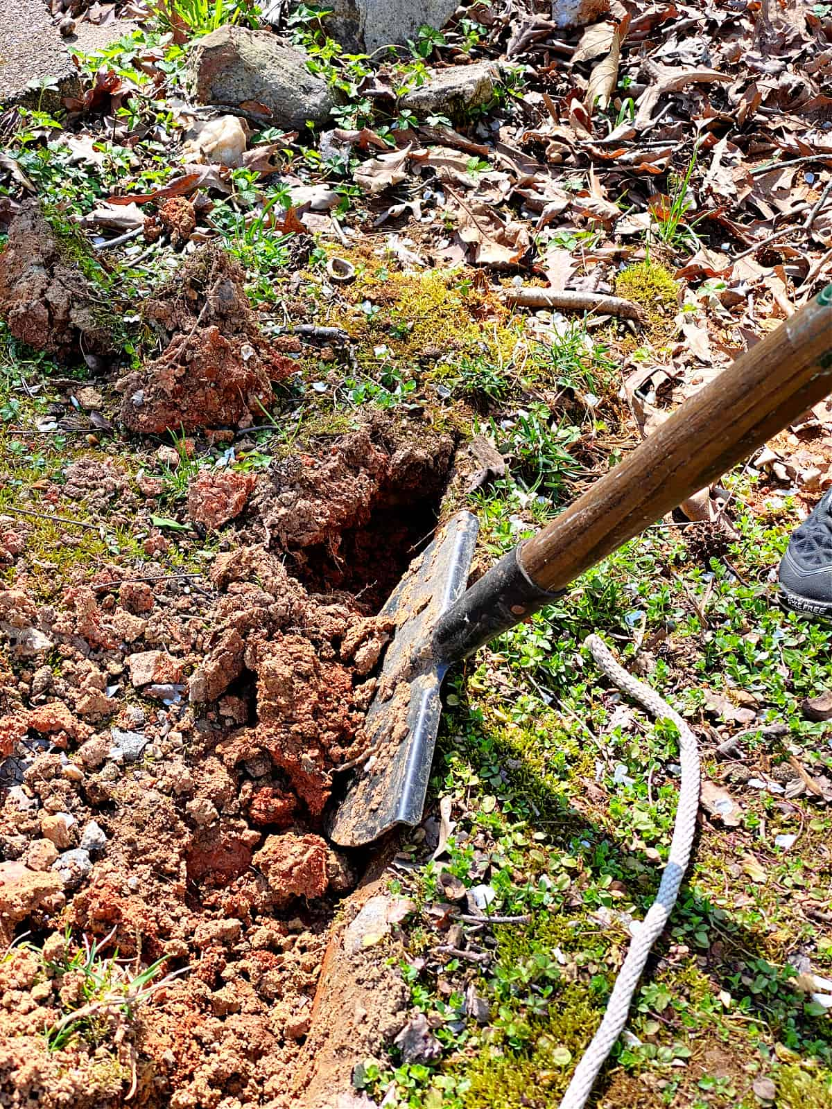 using an edging tool to dig a border