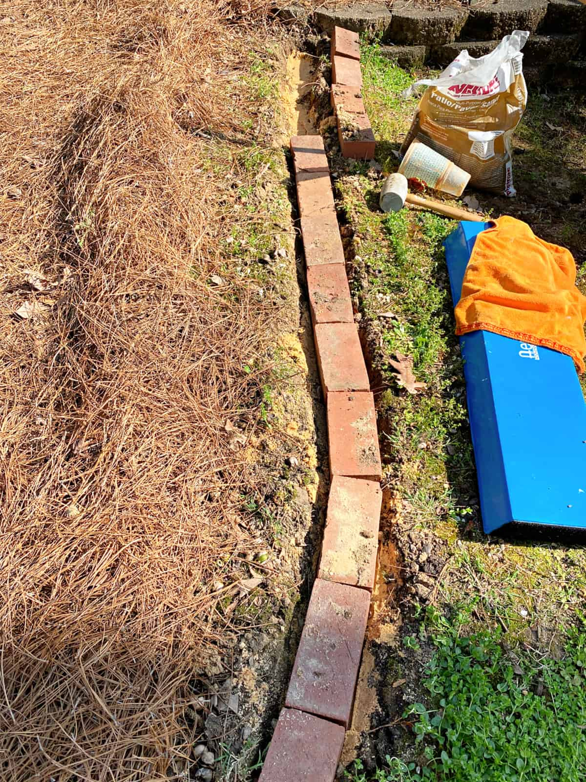 laying a brick edging in a garden