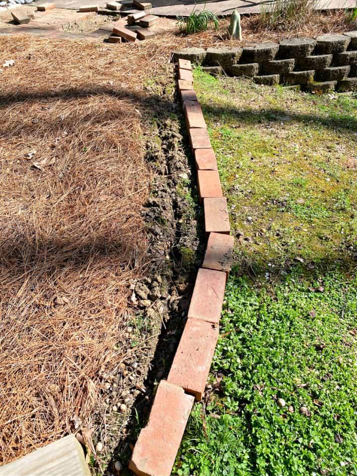 brick lined along a garden