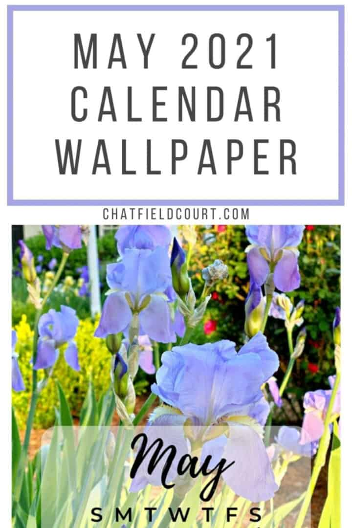 picture of irises with part of May calendar, and large graphic