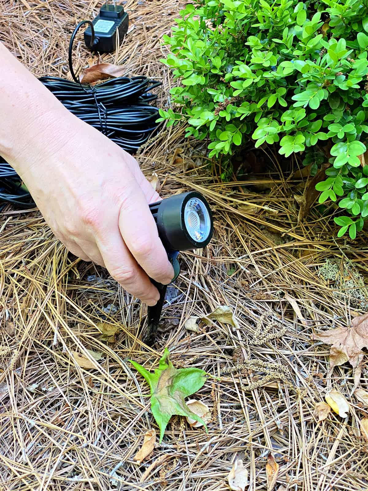 putting landscape light in ground