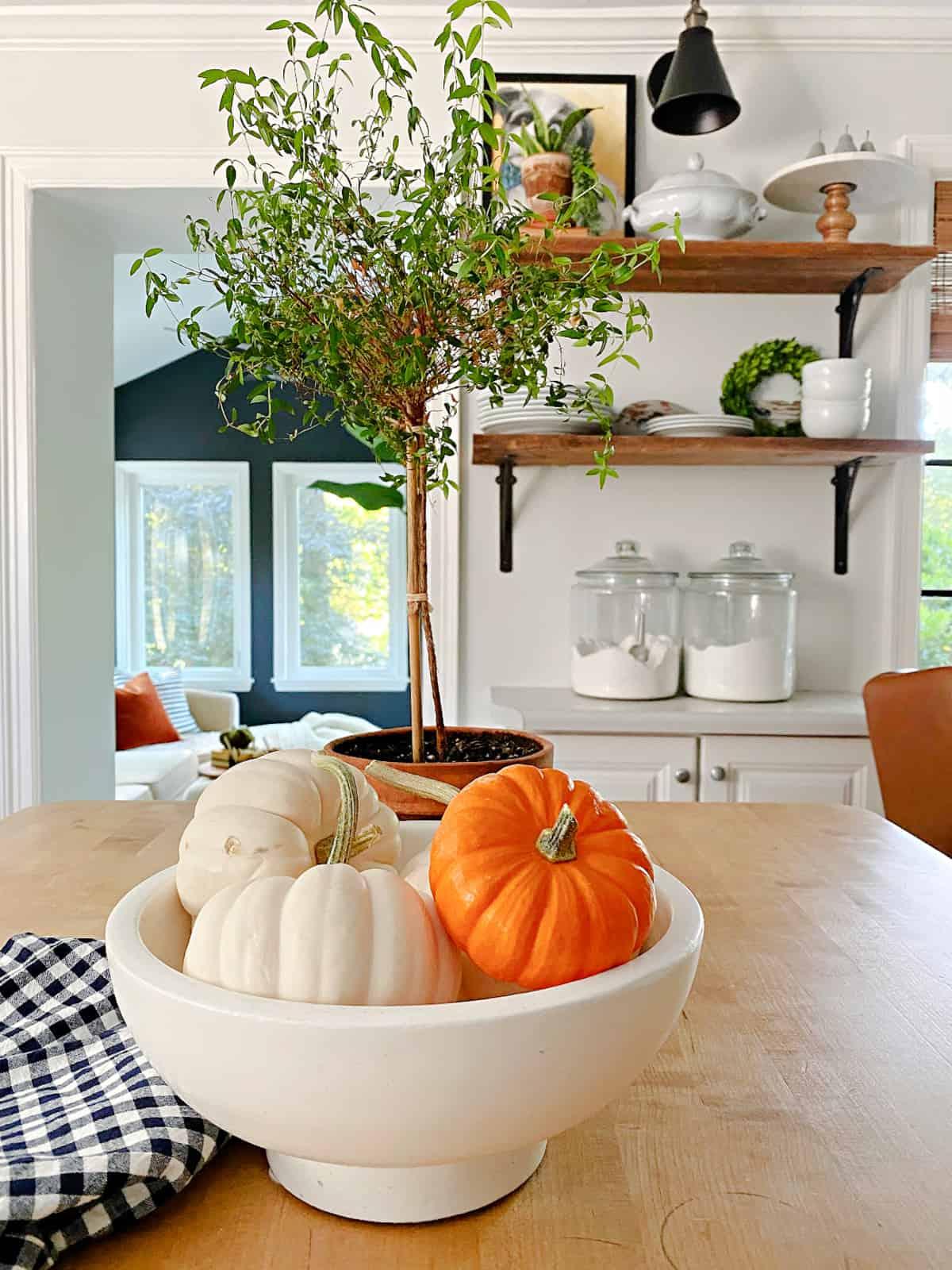 bowl of small pumpkins